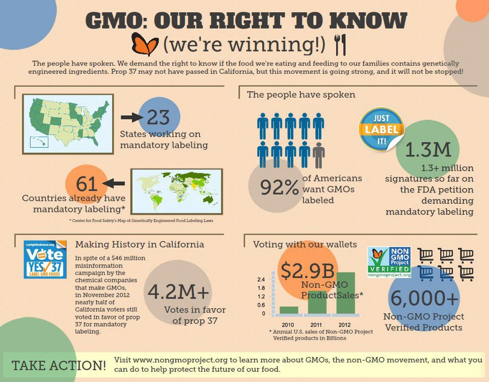 gmo labeling essay The labeling of genetically modified (gmo) foods is pure common sense, and we should have the information just like we have calorie and cholesterol counts there is.